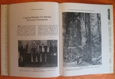Image for Story of a Logger: Frank D. Hobi: He Did it the Hard Way