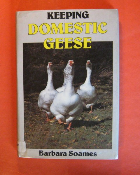 Image for Keeping Domestic Geese