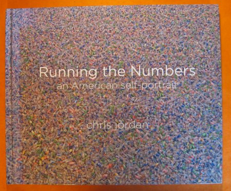 Image for Running the Numbers: An American Self-Portrait