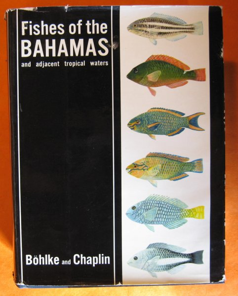 Image for Fishes of the Bahamas and Adjacent Tropical Waters