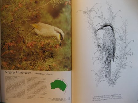 Image for Foliage Birds - Australian Birds and Their Favoured Plants