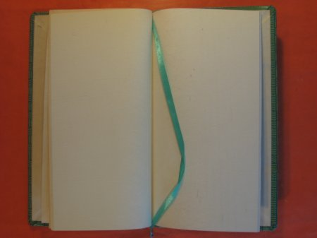Image for Blank Journal (Second Seasons)