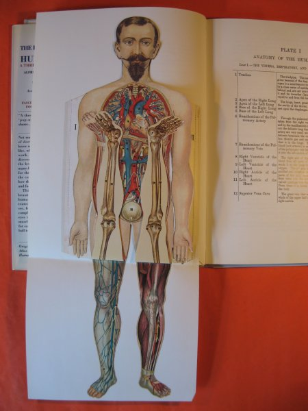 The Fold Out Atlas Of The Human Body An Illustrated Replica Of The