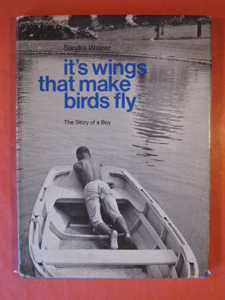 Image for It's Wings That Make Birds Fly:  The Story of a Boy