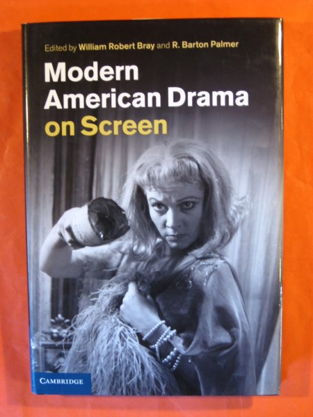 Image for Modern American Drama on Screen