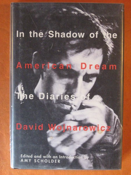 Image for In the Shadow of the American Dream: The Diaries of David Wojnarowicz