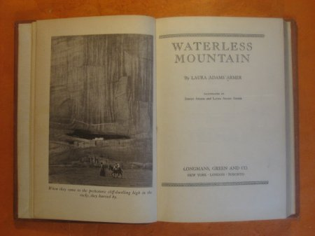 Image for Waterless Mountain