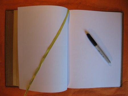 Image for Blank Sketch Book / Journal (The Smaller American House)