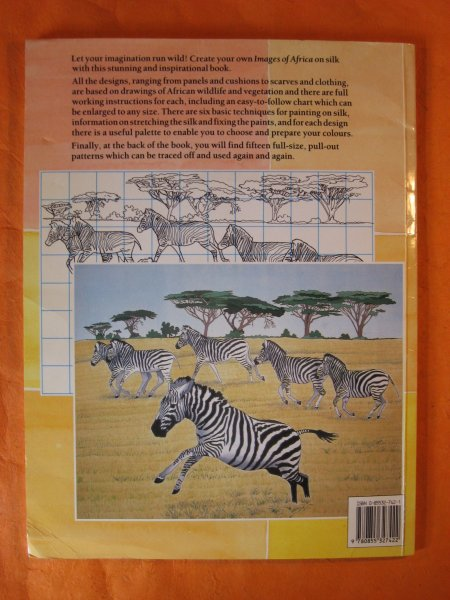 Image for Painting on Silk: Images of Africa/Includes Patterns