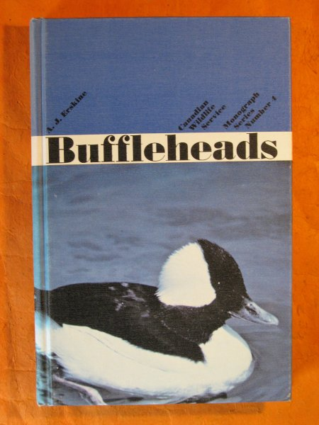 Image for Buffleheads
