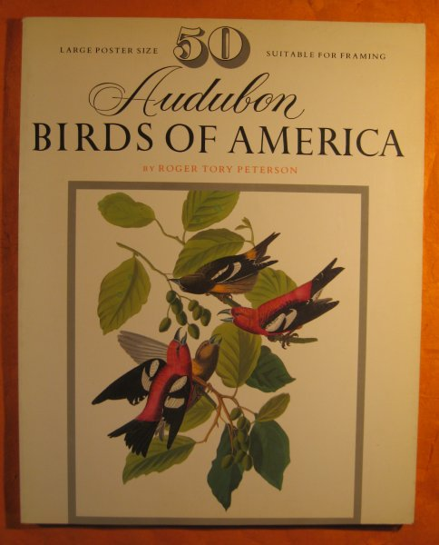 Image for 50 Audubon birds of America: From the original double elephant Folio