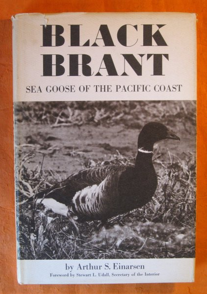 Image for Black Brant:  Sea Goose of the Pacific Coast