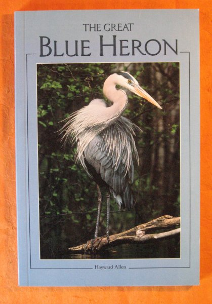 Image for The Great Blue Heron