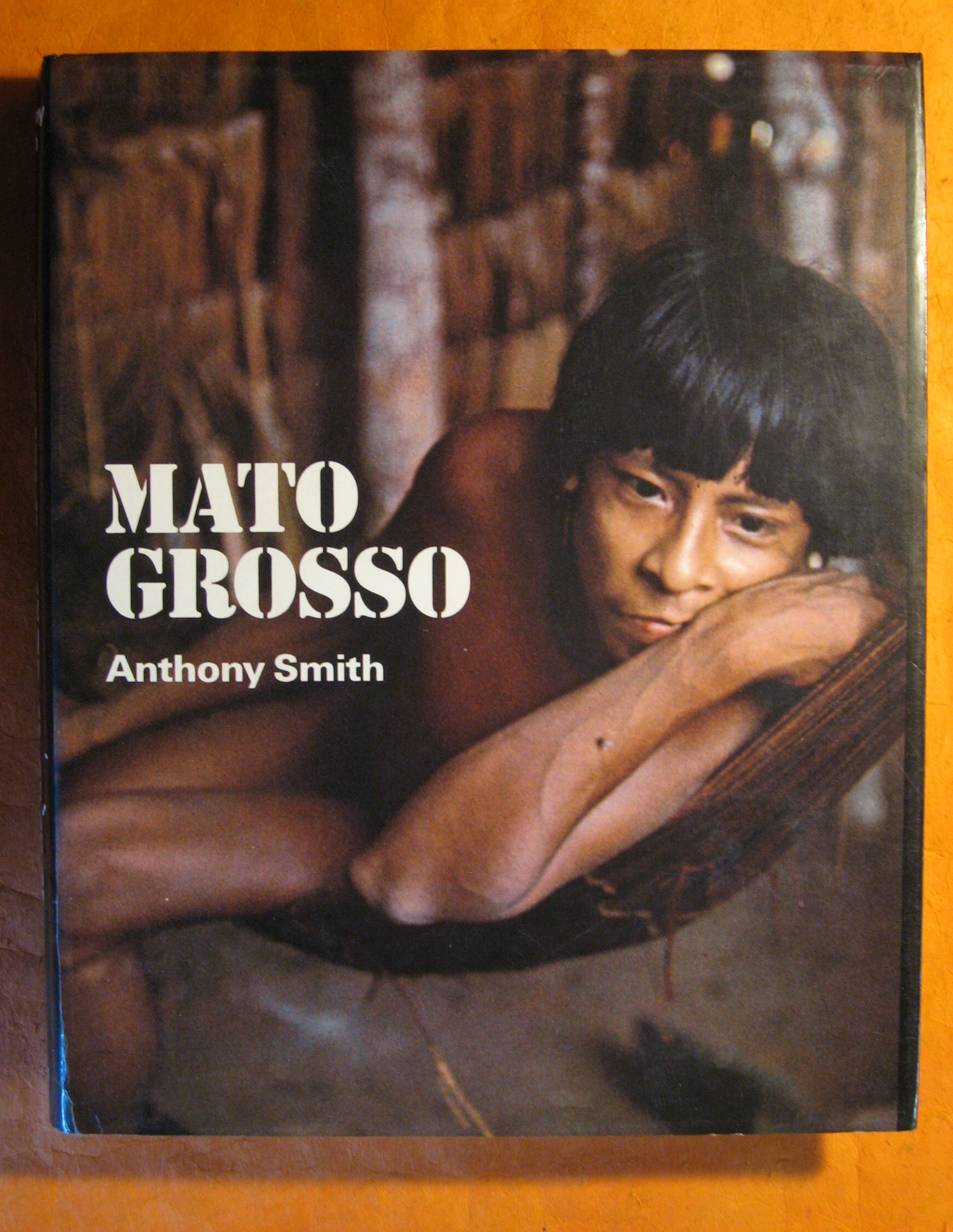 Image for Matto Grosso:  Last Virgin Land