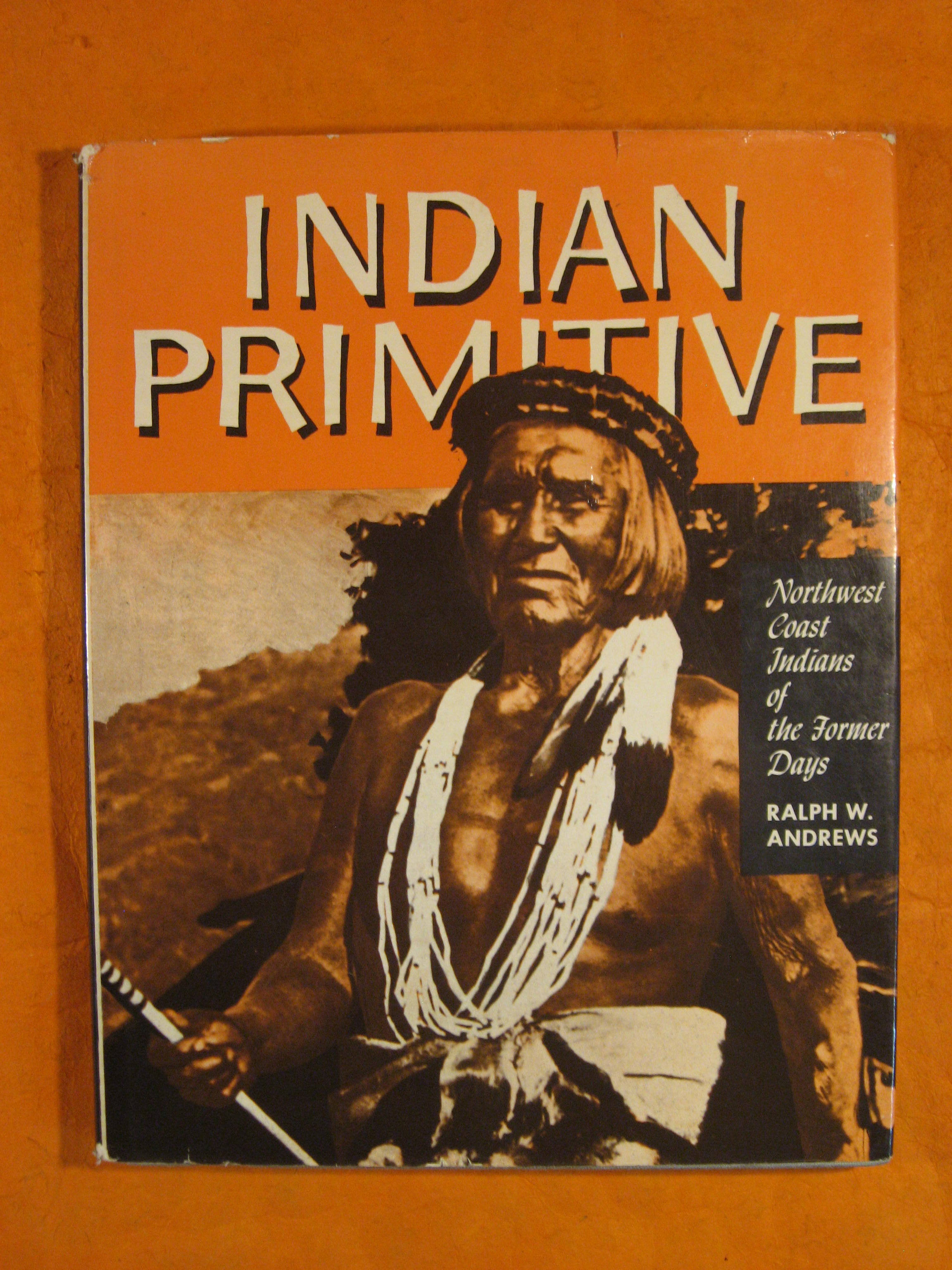 Image for Indian Primitive