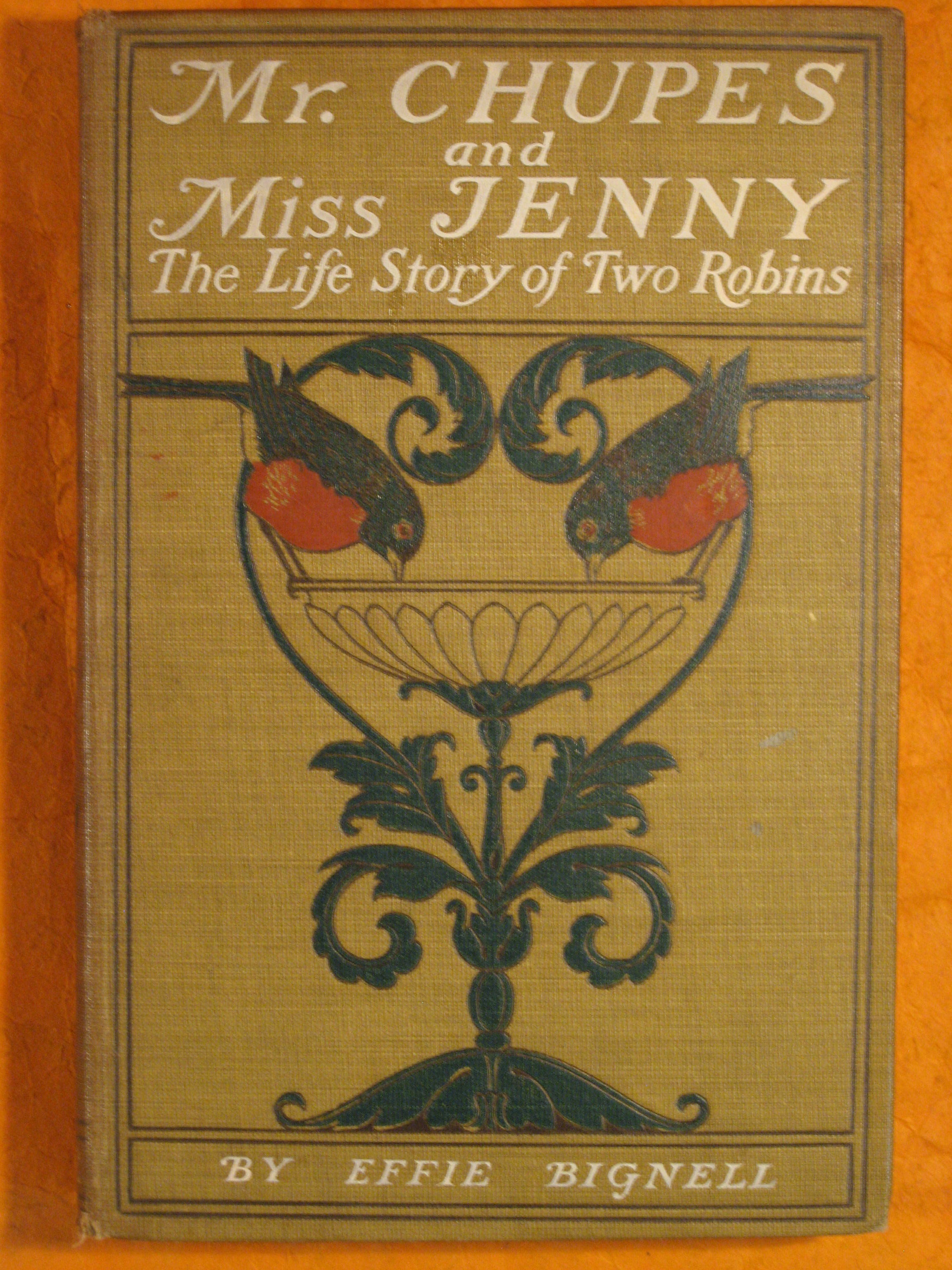 Image for Mr. Chupes and Miss Jenny:  The Life Story of Two Robins
