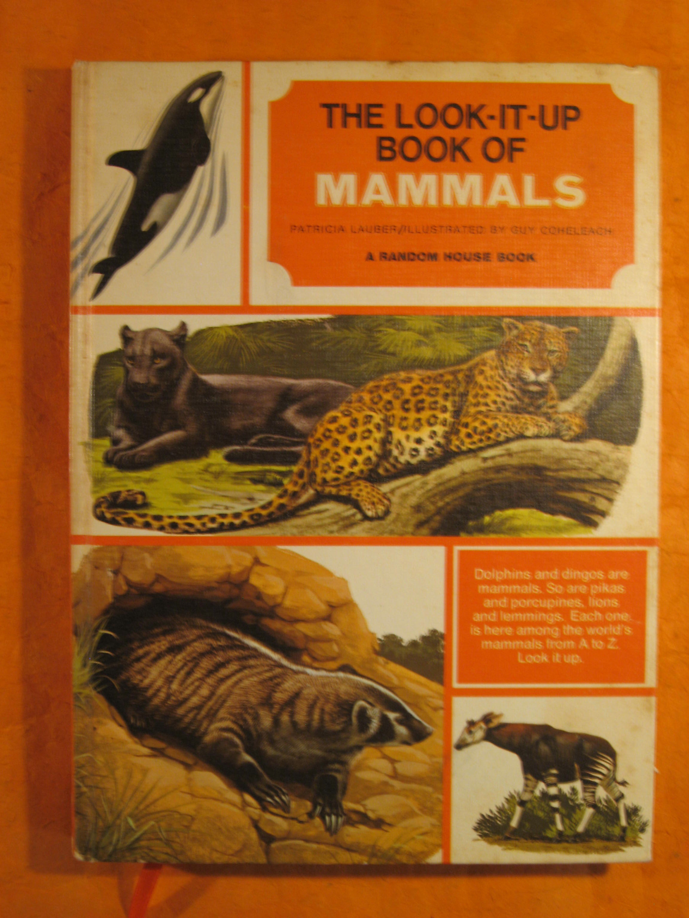 Image for Blank Journal (Look-It-Up Book of Mammals)