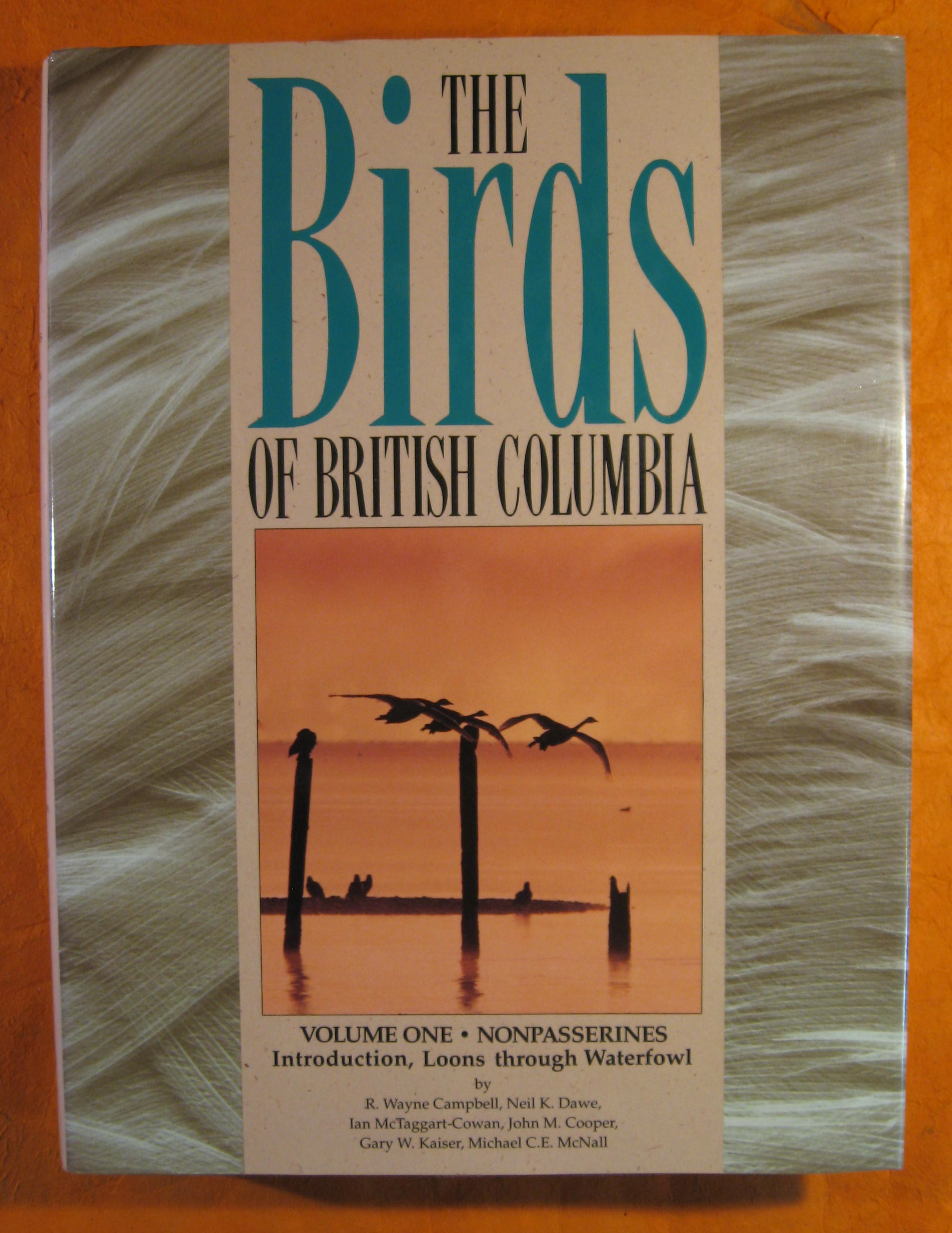 Image for The Birds of British Columbia Volume One:  Nonpasserines; Introduction, Loons Through Waterfowl