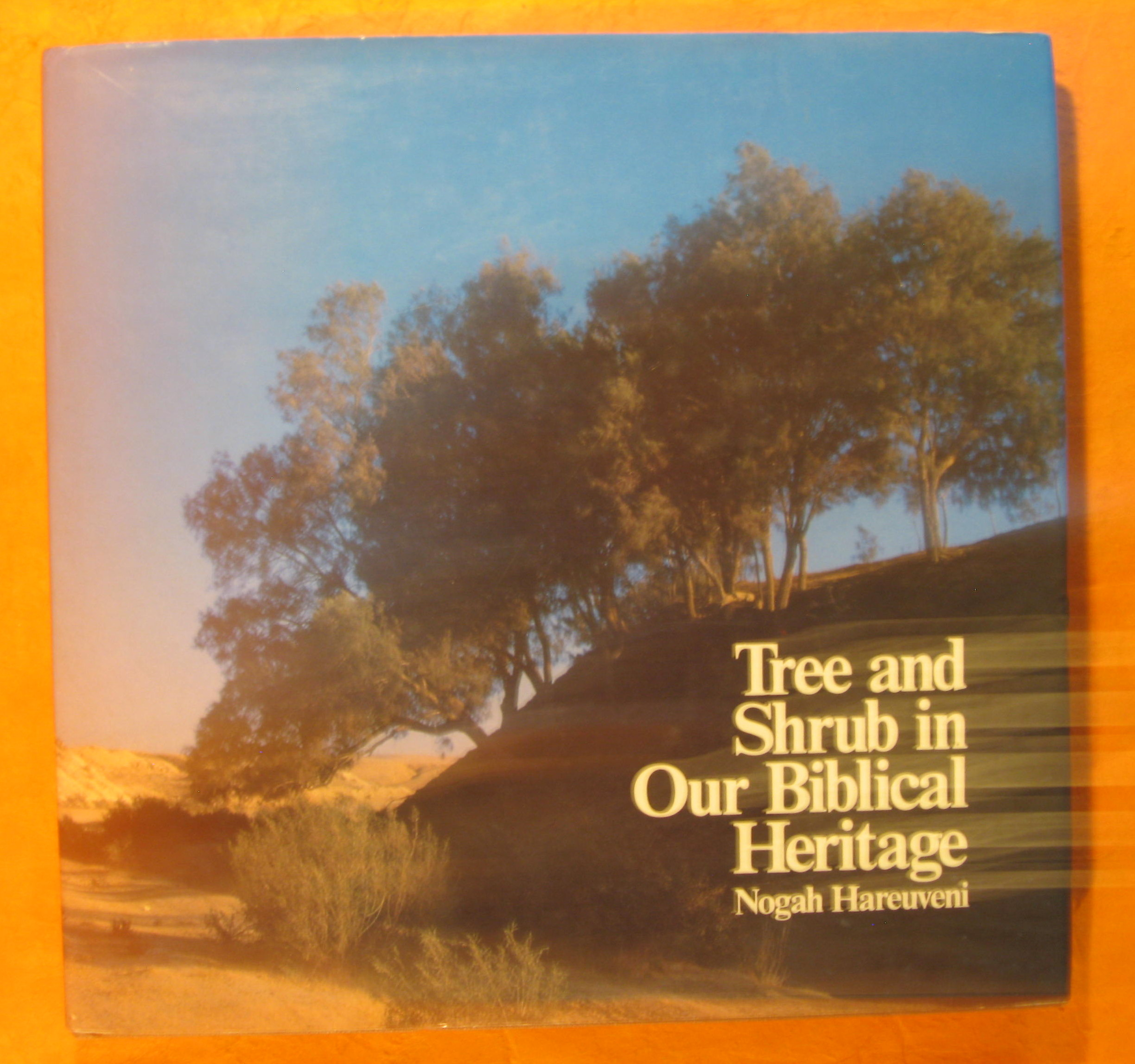 Image for Tree and Shrub in Our Biblical Heritage