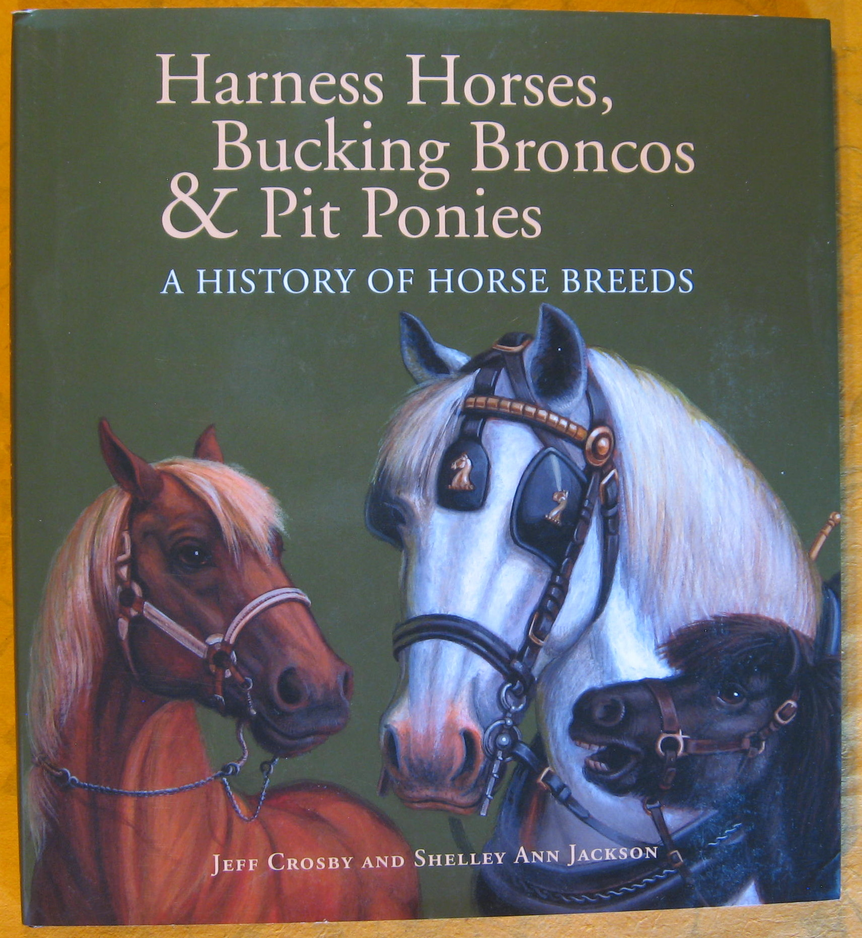 Image for Harness Horses, Bucking Broncos & Pit Ponies: A History of Horse Breeds