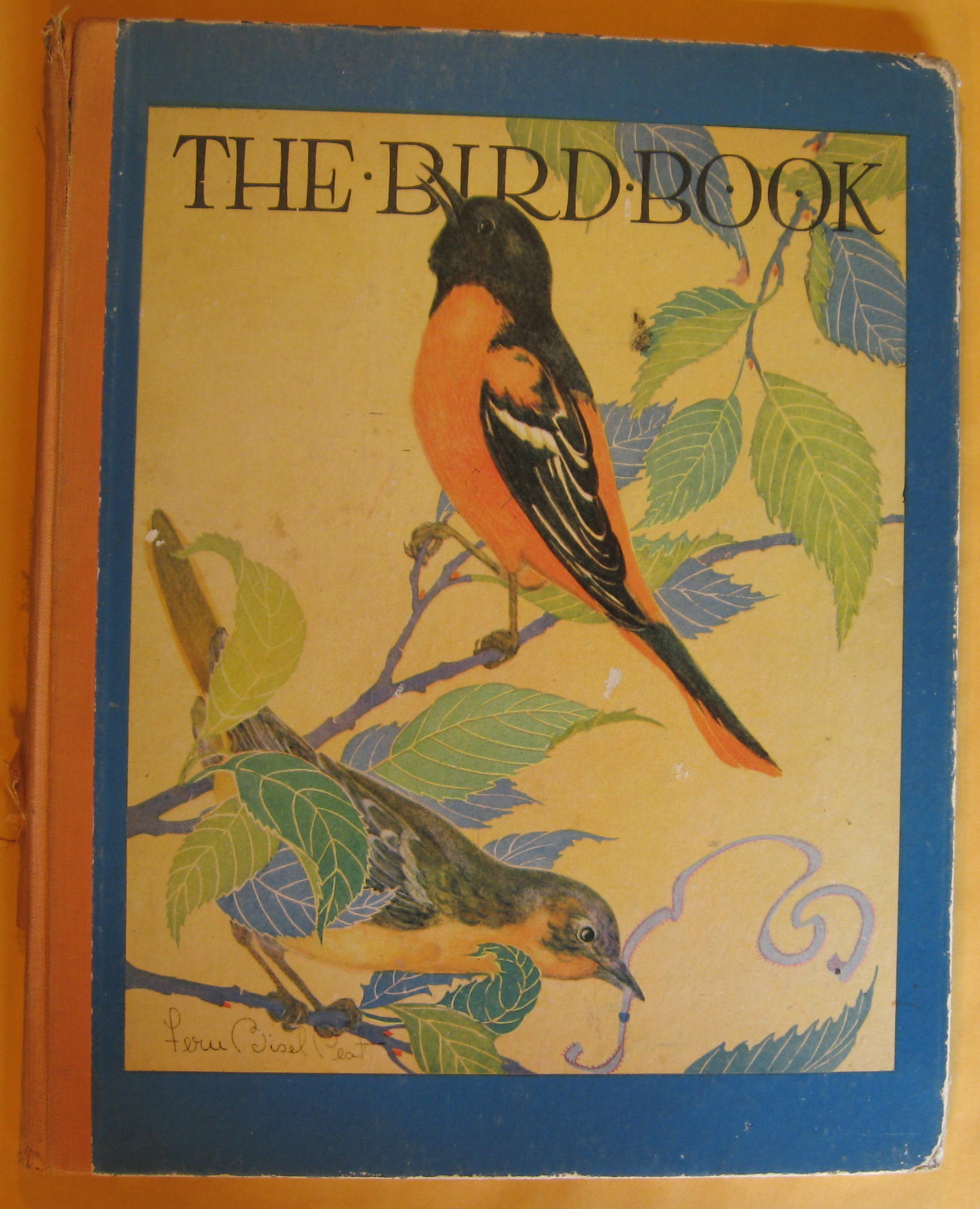 Image for The Bird Book:  Observations of Bird Life
