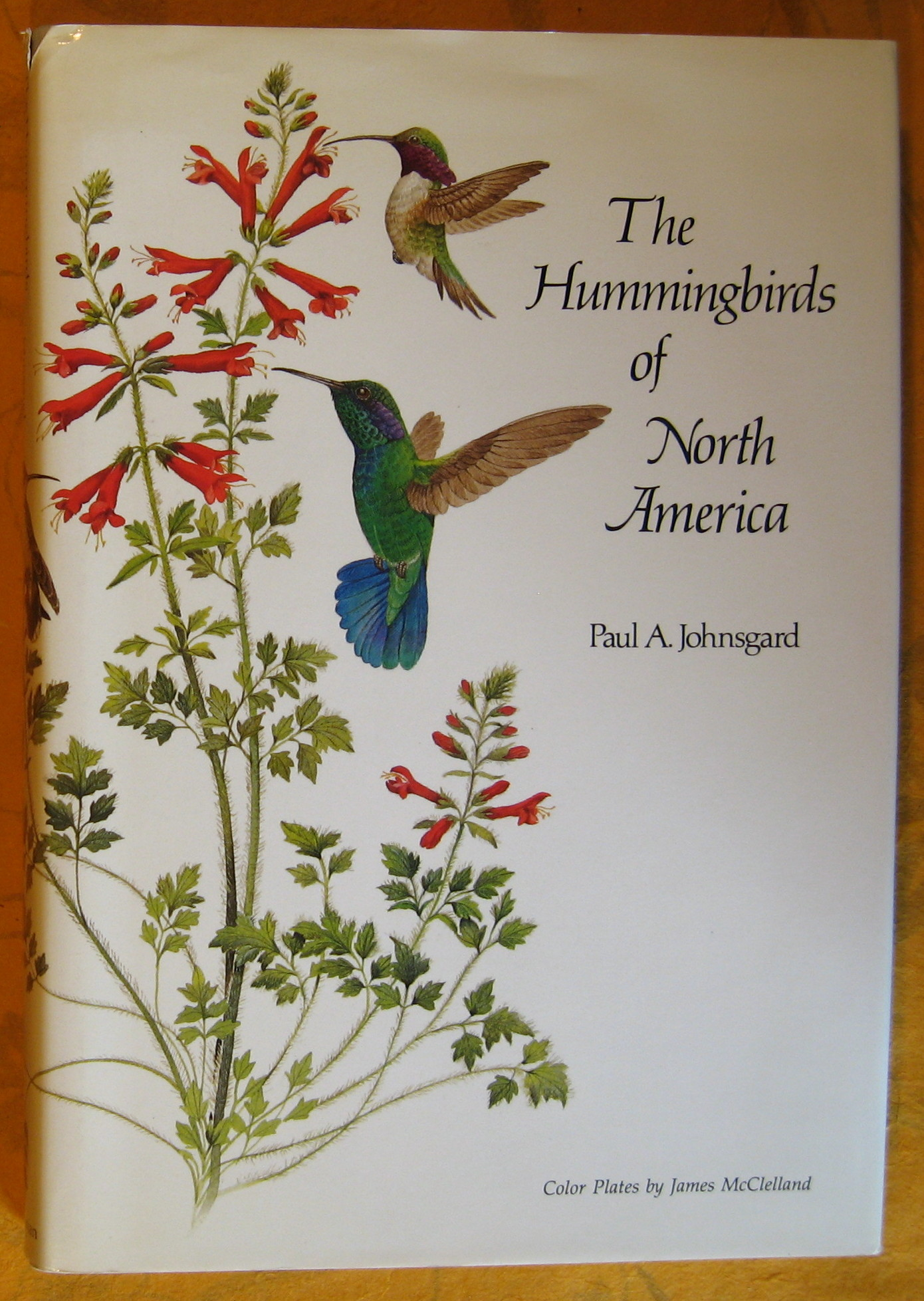 Image for Hummingbirds of North America