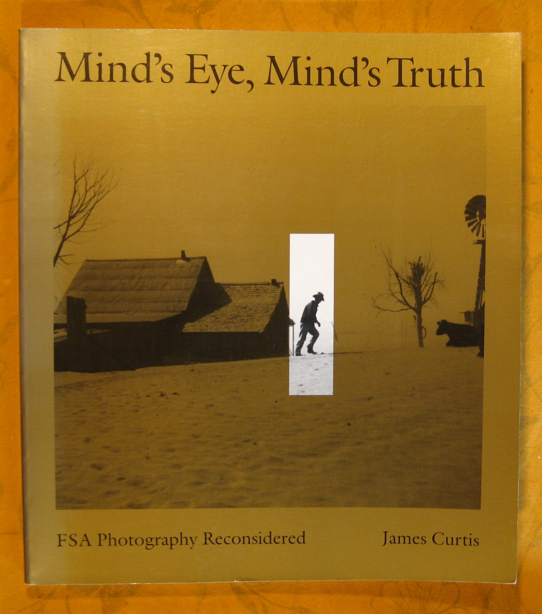 Image for Mind's Eye, Mind's Truth: FSA Photography Reconsidered